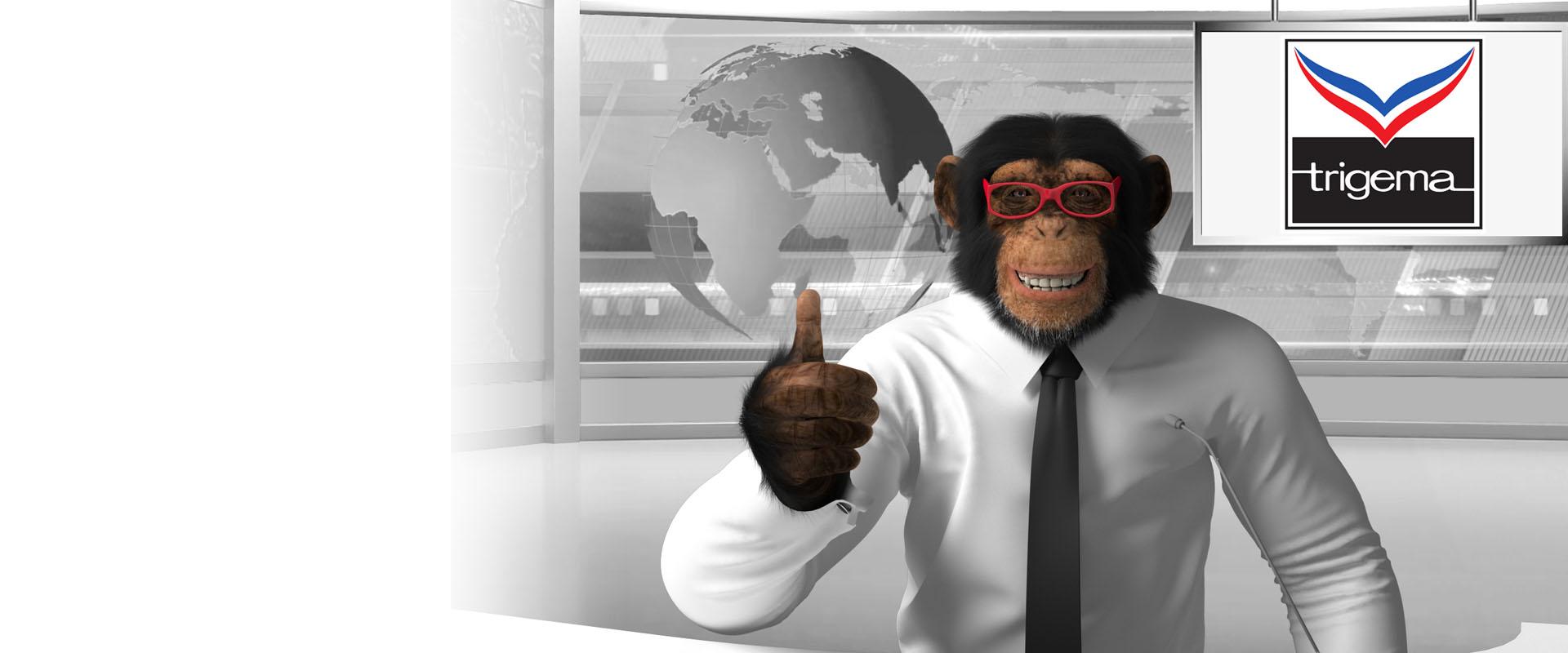 Trigema Schimpanse 3D Modell