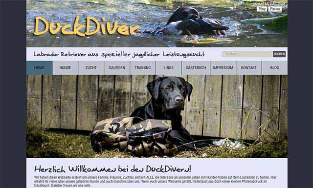 Responsive CMS Webseite DuckDiver